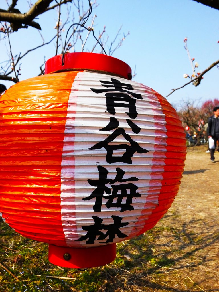 a colorful lantern