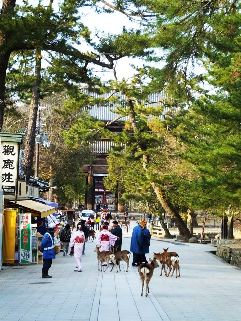 in front of Todaiji