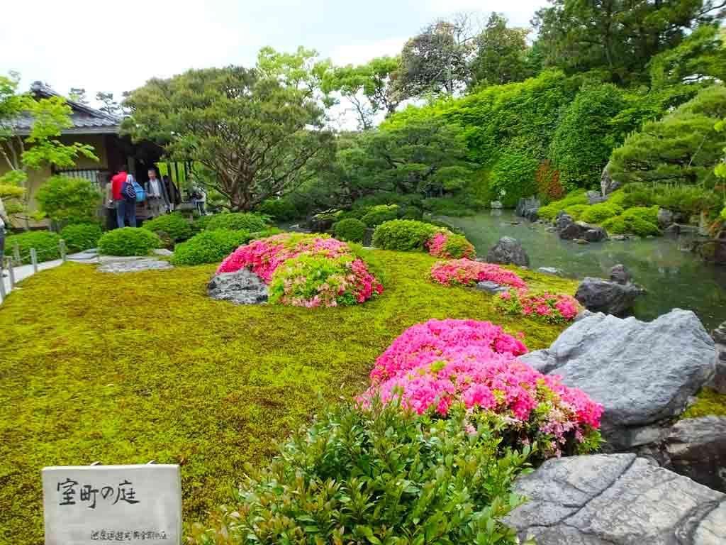 a-garden-with-azaleas