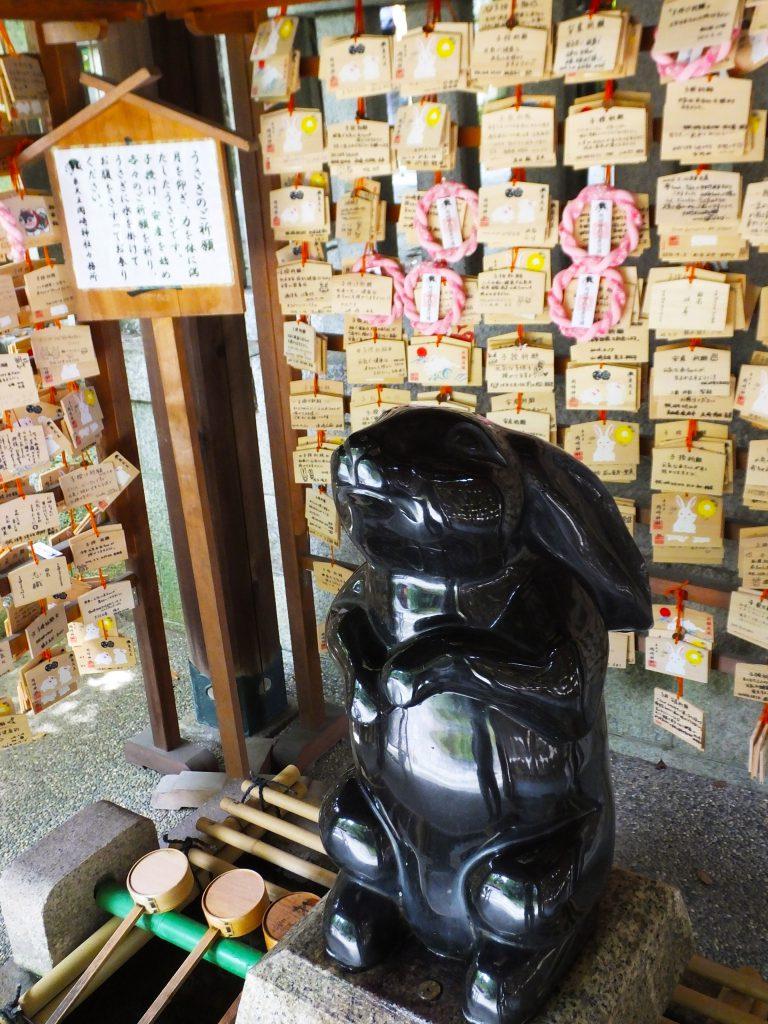 a black rabbit at the chōzuya