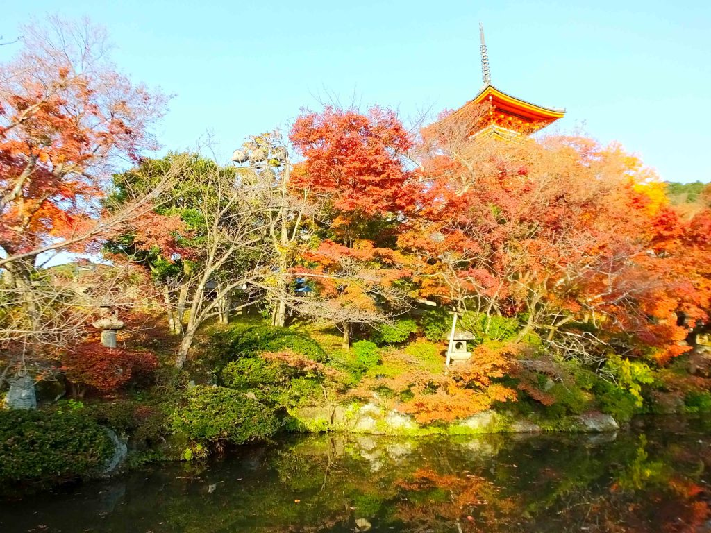 the pond, autumn leaves and Three-storied Pagoda