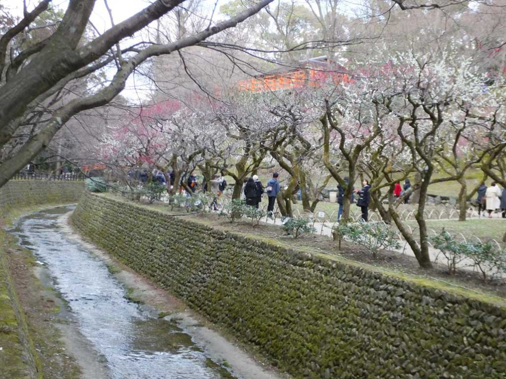 the description for Odoi, Tenjin River and Kitano Odoi2