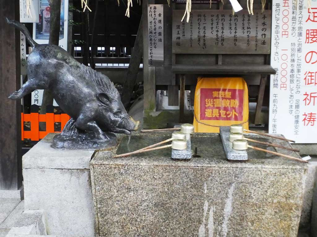 the boars at Go-o Shrine