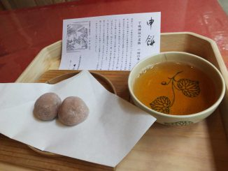 the sarumochi with hojicha tea