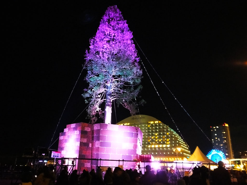 The World\'s Tallest Christmas Tree Project in Kobe - Find Your Japan