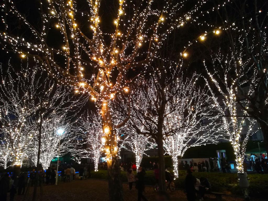 Nagura Park 1