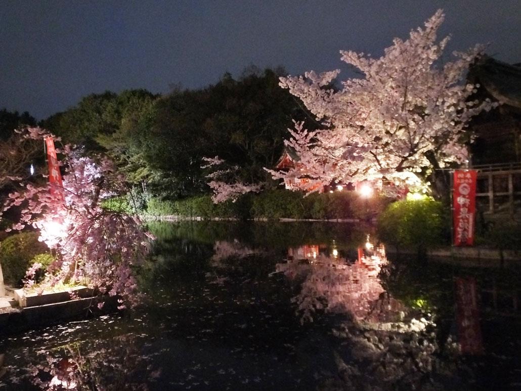 Shinsen-en garden 2