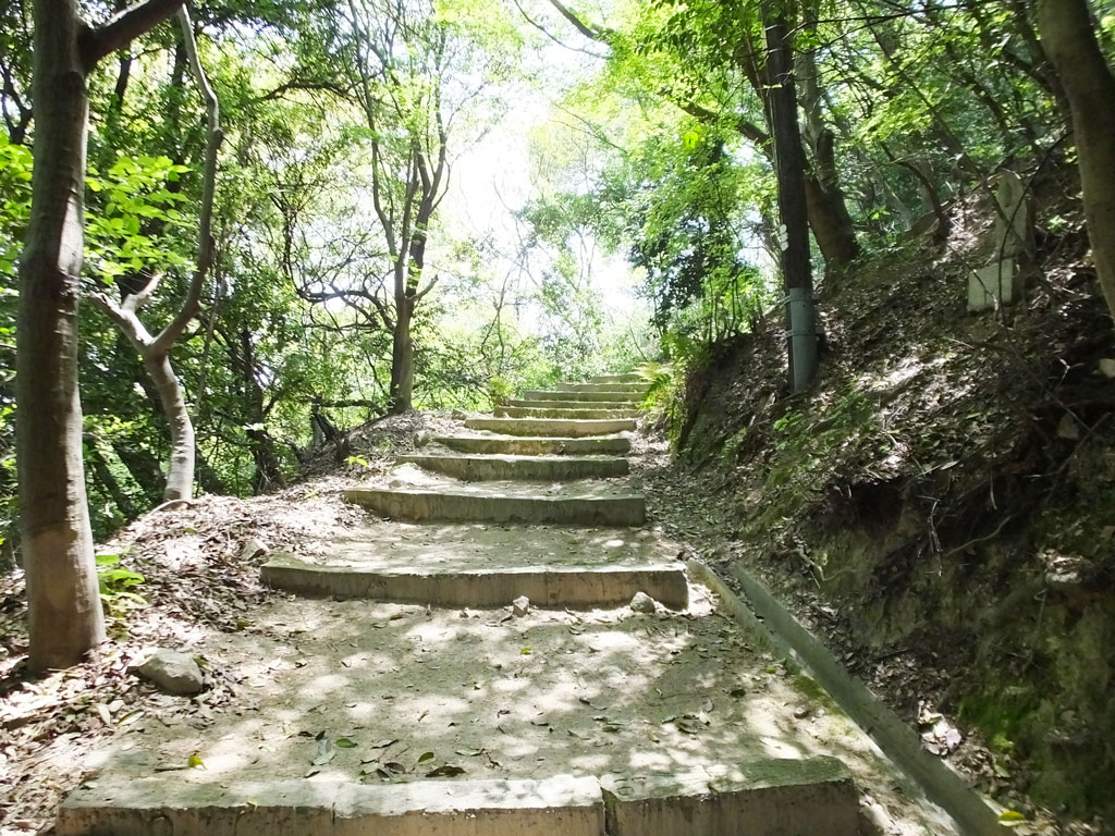 the steps on the mountain